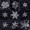 Snowflake Collage