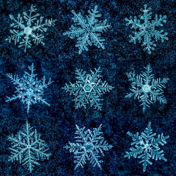 Snowflake Collage 12/30/17