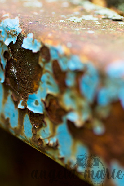 Closeup of rusted boat. Can you find the living thing in this pic? I didn't realize it was there until after seeing the picture a few times.