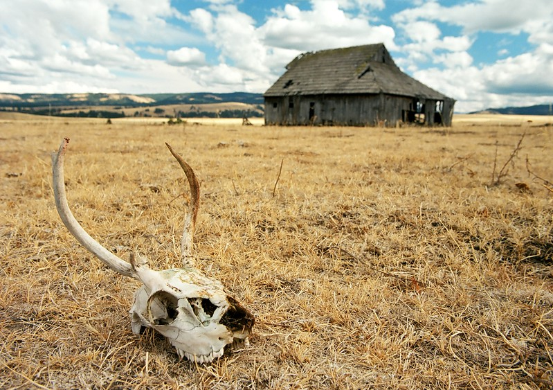 Prairie Song.