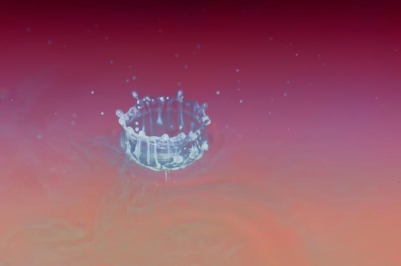 Milk Crown