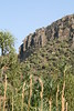 Isalo_Madagascar_2007_0010