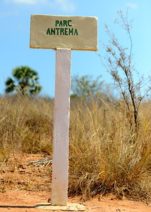 Antrema Forest Park Sign
