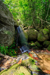 waterfall in Nosy Mangabe, Madagascar wilderness