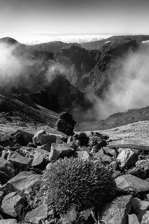 Pico do Cedro