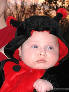 ok, first the pumpkin, now a ladybug. when do i get candy?