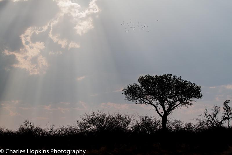 Sun beams through Storm Clouds
