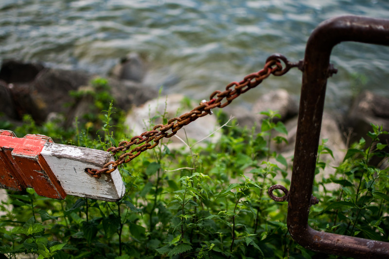 By Lake Mendota