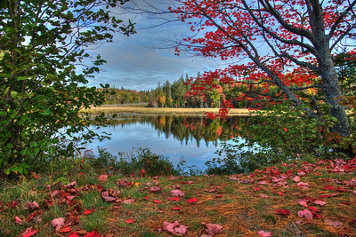 by Ron- Fall-Cache Lake trail