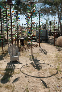 The Bottletree Garden, Oro Valley, California