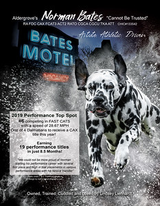 Norman Bates ad