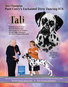 Tali Spotter Ad Spring 2020