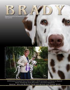 Brady ad2