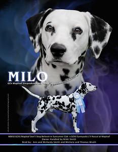 Milo ad