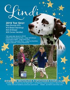 Lindi Top Spot ad