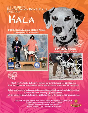 Kala Spotter ad