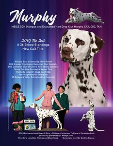 Murphy Top Spot ad