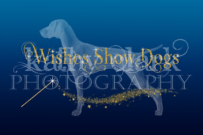 Wishes Show dogs logo