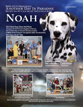 Noah Spotter ad