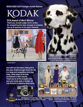 Kodak Spotter Ad