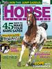 Horse Illustrated Cover 2013 - Appaloosa Stallion