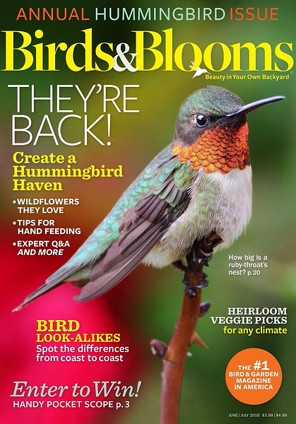 Birds and Blooms (June/July 2016)