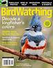Birdwatching (August 2011)