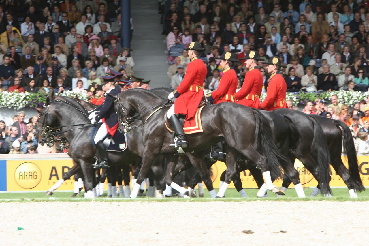 #34- German Stallions