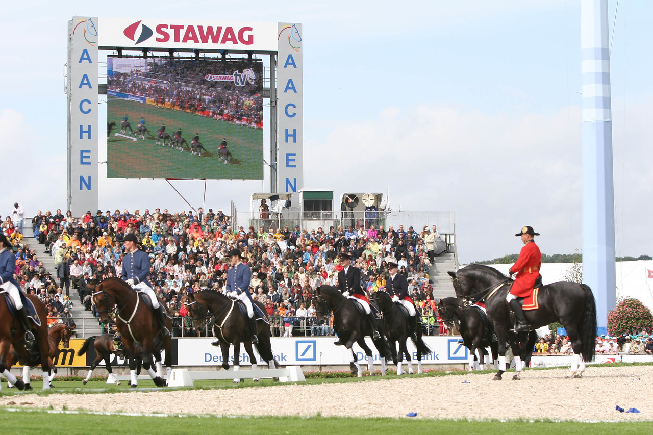 #26-German Stud Quadrille reflected on the big screen