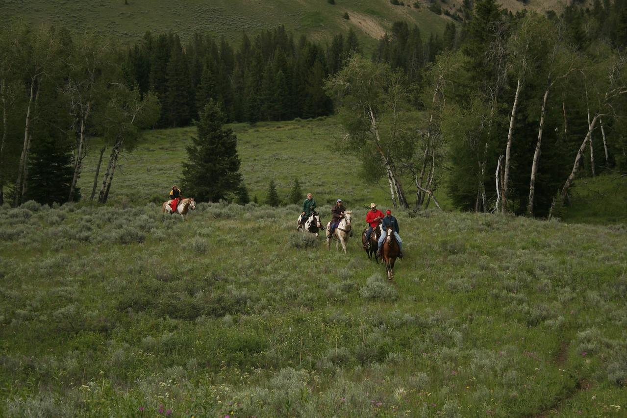 Montana trail