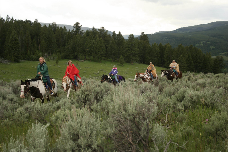 Trail ride in the Gallatin National Forest