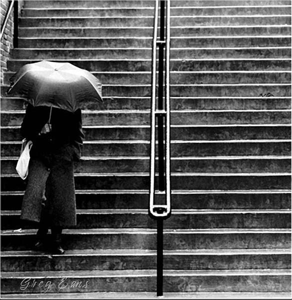 Woman with umbrella. University of Kentucky campus.