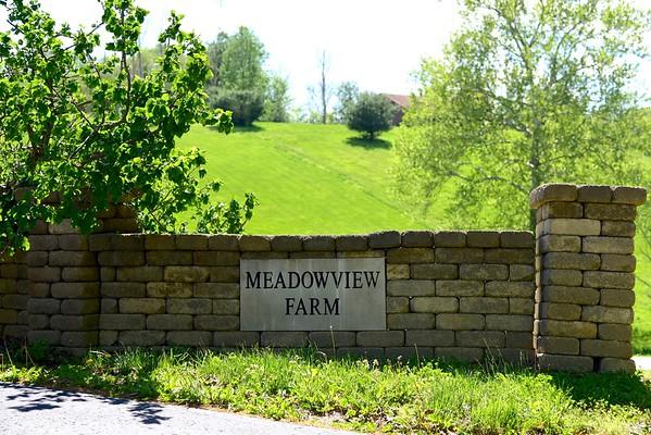 MeadowView Farm