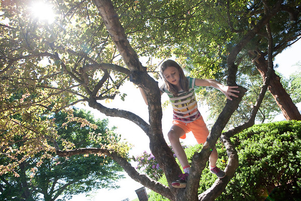 AMY SWEENEY/Staff photo. Emma Smith, 9, climbs a tree while playing at Lynch Park in Beverly on the first day of summer vacation. <br /> June 23, 2016