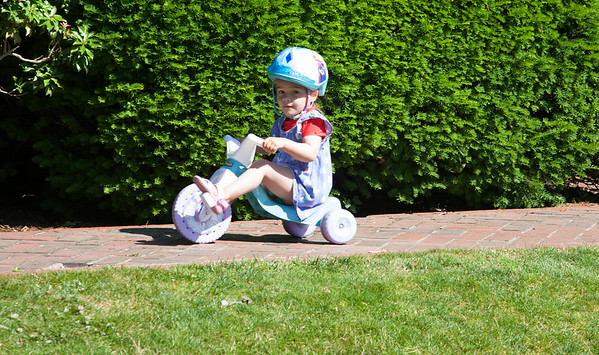 AMY SWEENEY/Staff photo. Lilly Holak, 3, from Beverly rides her tricycle around the Rose Garden at Lynch Park in Beverly.