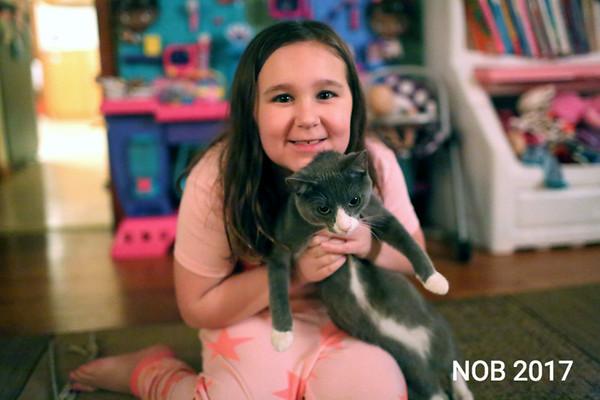 170309_sn_hgr_cats_009.JPG Friends of Beverly Animals