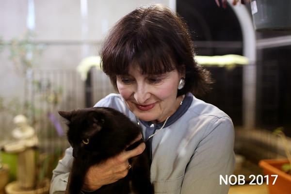 170309_sn_hgr_cats_010.JPG Friends of Beverly Animals