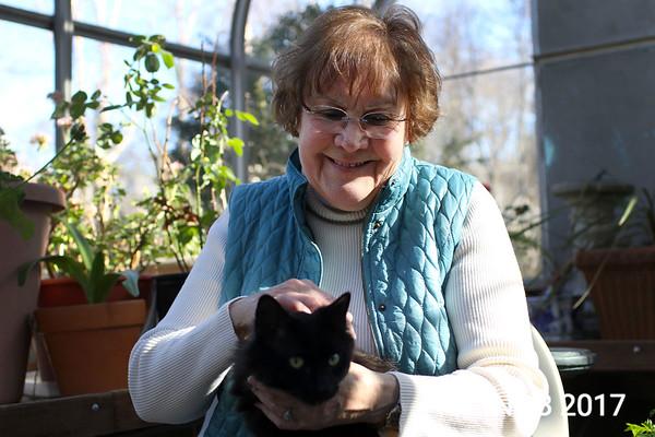 170309_sn_hgr_cats_001.JPG Friends of Beverly Animals