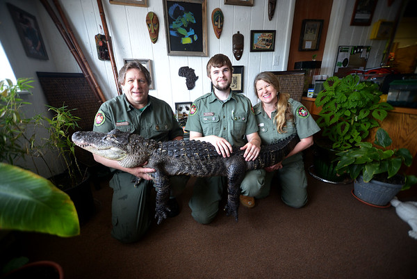 JIM VAIKNORAS/Staff photo Michael K. Ralbovsky , Mack Ralbovsky, and Joaney M. Gallagher with Fred Gator of at Rainforest Reptile Shows of Rainforest Reptile Shows