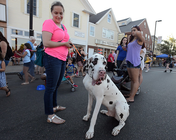 RYAN HUTTON/ Staff photo<br /> Brianna Kamruzzaman holds on to her giant Dalmatian Seymoure during Danvers' annual Oldies Night block party on Maple Street on Thursday night.