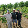 TIM JEAN/Staff photo<br /> Daniel Hicks II, stands with his son Dan and grandson Danny in the fields at Sunnycrest Farm in Londonderry. 7/20/16