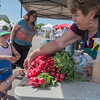 "Dee Pietsch (right) picks out a bunch of radishes requested by Greta Rath, 4, at the farmers market held every Saturday in Best Buy's parking lot. A vendor at the farmers market for 39 years, Pietsch said, ""I see a lot of repeat customers and made a lot of good friends."" Photo by Jackson Forderer"