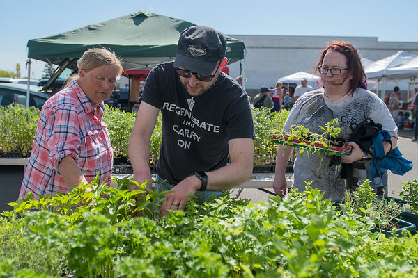 Bertha Kleinschmidt (left) of Country Gardens helps Chris (center) and Wendy Prantner look for a specific type of tomato plant at the farmer's market. Bernie and Bertha Kleinschmidt have been vendors at the farmers market since 1985. Photo by Jackson Forderer
