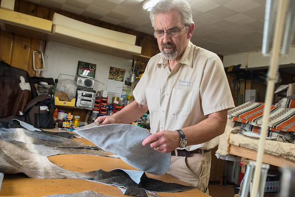 Lenny Hiniker cuts bar stool covers out of Brazilian cowhide for a hunting lodge in South Dakota at his business Upholstery Service Company. Hiniker said he has been in business for over 40 years. Photo by Jackson Forderer