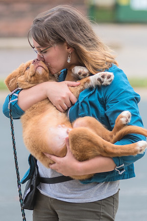 Alex Oldenburg gives Windigo, a 14-week old Nova Scotia duck tolling retriever, a kiss outside of Messy Dog. Oldenburg said she got a lot of experience in training dogs in 4H. Photo by Jackson Forderer