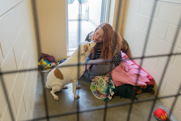 Terri Hanson gives a kiss to a dog in its pen at BENCHS animal shelter. Hanson facilitates many dog adoptions at the humane shelter. Photo by Jackson Forderer