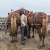 Jason Benson takes the reins off of two draft horses after taking them for a ride in rural New Ulm. Photo by Jackson Forderer