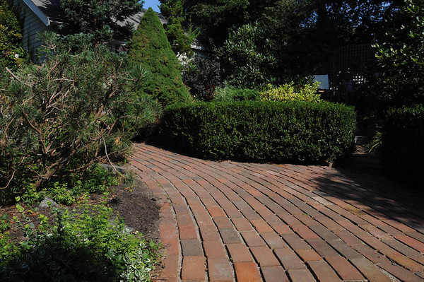 Marblehead:<br /> Front garden brick path and sitting area ( in background with shrub fairy rose border): variegated creeping, Euronymus, mugo pine, sweet woodruff (left side) with boxwood hedge, variegated weigeia, and alberta spruce framing brick path through front garden to front door and backyard in Karin McCarthy's garden at 15 Cloutmans Lane. <br /> Photo by Ken Yuszkus/Salem News, Tuesday, September 13, 2011.