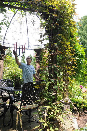 Marblehead:<br /> Gardener, Bill Flannery, in Pat Ayer's backyard garden. <br /> Photo by Ken Yuszkus/Salem News, Tuesday, July 12, 2011.
