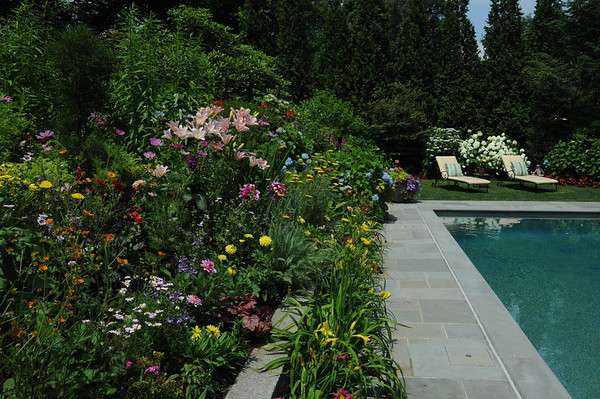 Marblehead:<br /> Pat Ayer's backyard garden.<br /> Photo by Ken Yuszkus/Salem News, Tuesday, July 12, 2011.